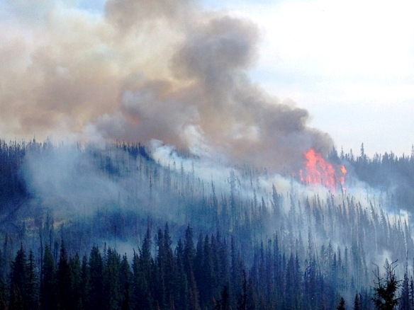 Wildfire burning in rolling hills of the Edson Area
