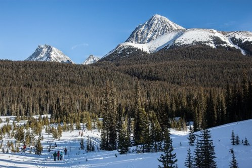 Alberta Parks hosts Avalanche Awareness Day every January in Peter Lougheed Provincial Park. Photo: Steve Baylin.