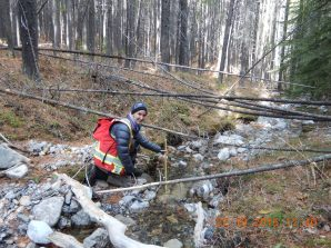 FISHES team member measures the depth of Girardi Creek (near Blairmore). The team also assesses other stream characteristics such as bank stability and substrates.