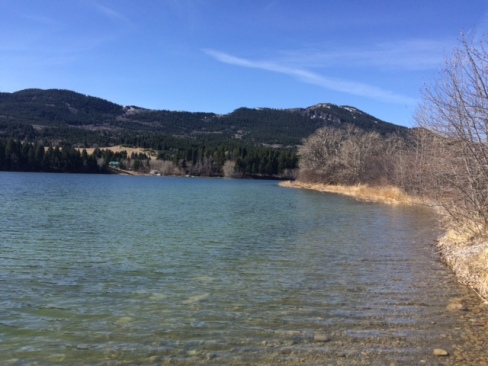 Lee Lake – stocked with 45,000 Rainbow Trout and 6,500 Cutthroat Trout in April 2016.